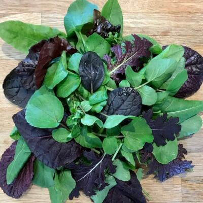 Salad Leaves-Summer Mix