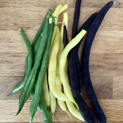 Rainbow Beans
