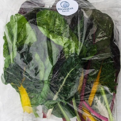 Rainbow Chard Mixed Tender Leaves