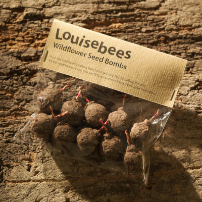 A Packet Of 10 Wildflower Seed Bombs