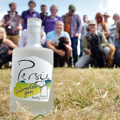 Persie Labrador Gin