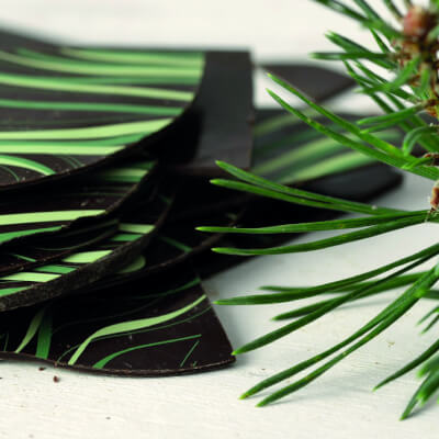 Scots Pine Flavoured Madagascar Plain Chocolate Shards