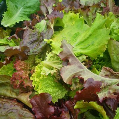 Mixed Salad Leaf 100G