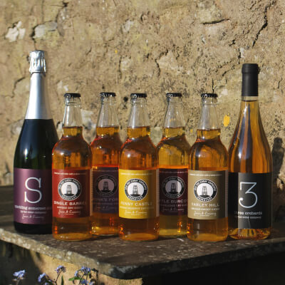 Tor Cider Tasting Selection