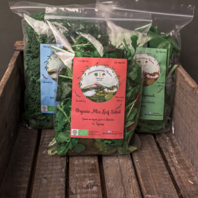 Organic Mix Leaf Salad
