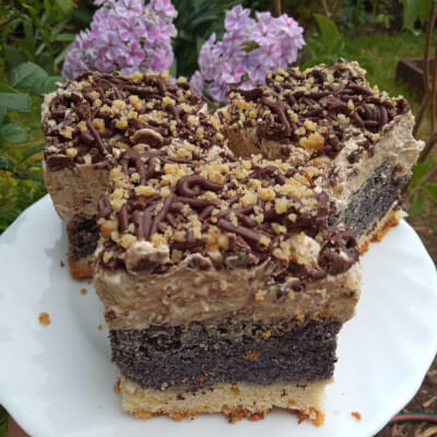 Walnut & Poppy Seeds Slice