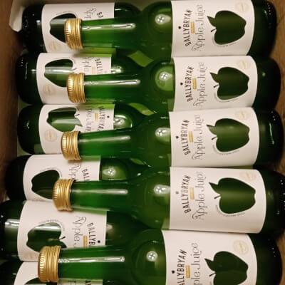 Ballybryan Apple Juice - Single Serve Bottles