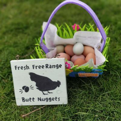 Free Range Rainbow Eggs