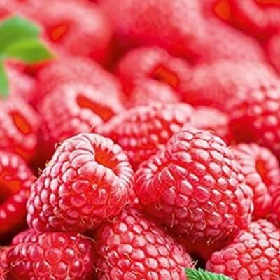 Leadketty Farm Fresh Raspberries