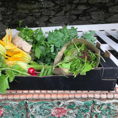 €36 Vegetable Box