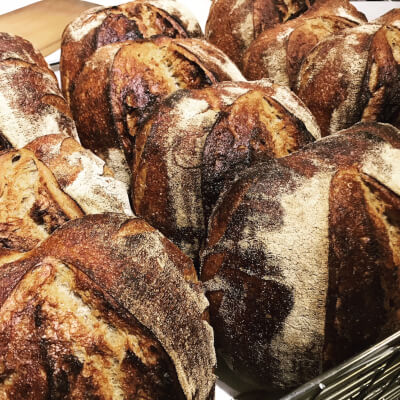 Radford Wild 850g Sourdough
