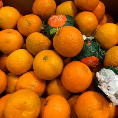 Organic  Seville Oranges (For Marmalade)