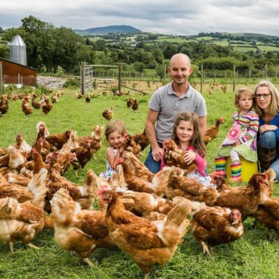 Dozen Chapel Lane Organic Eggs
