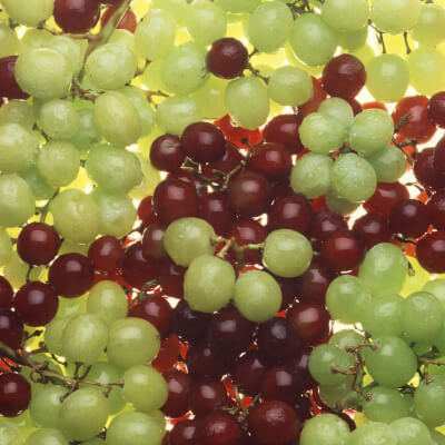 Grapes Red Seedless South Africa