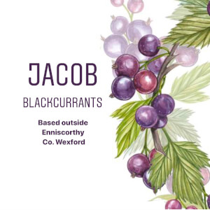 Jacob Blackcurrants