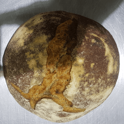 Sourdough Sprouted Wheat Boule