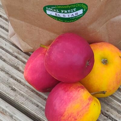 David Llewellyn Elstar Apples - Bag Of Apples