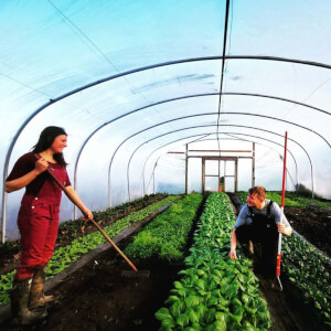 Falkland Kitchen Farm
