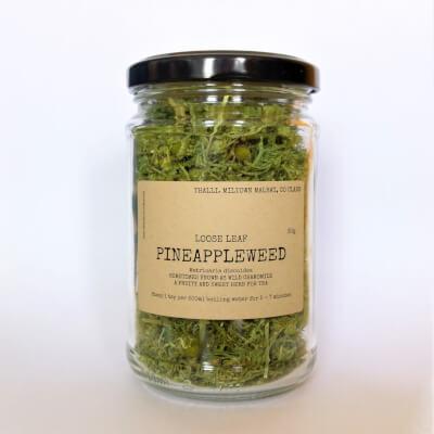 Pineappleweed Loose Tea