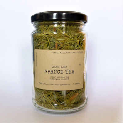 Spruce Tea