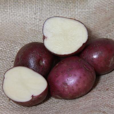 Arran Victory Potatoes (Organic)