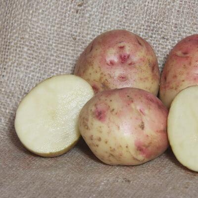 Skea's Select Potatoes (Organic)