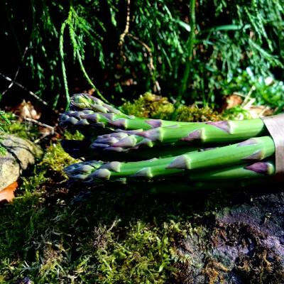 Organic  Asparagus Green