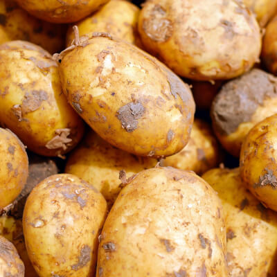 Organic New Scottish Potatoes