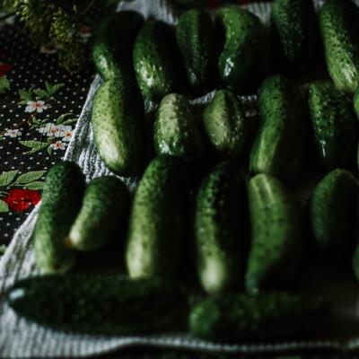 Organic Cucumber Short Heritage