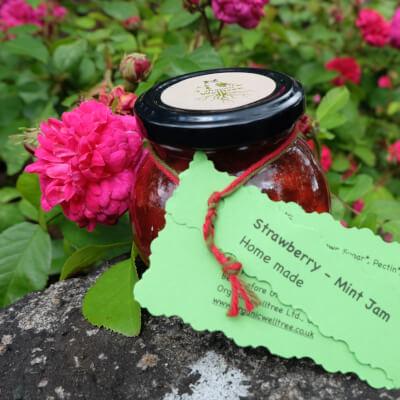 Strawberry & Mint Jam