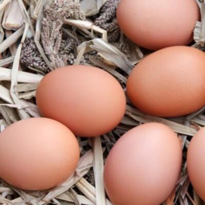 West Wicklow Organic Eggs