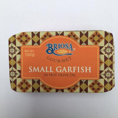 Small Garfish