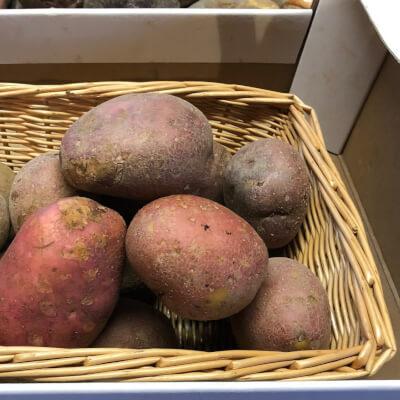 New Season Rooster Potatoes