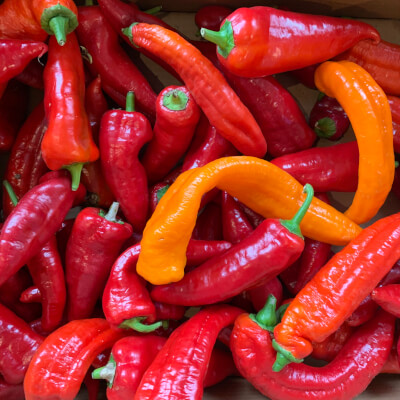 Organic Long Red Peppers