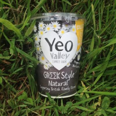 Yeo Valley Greek Style Organic Yogurt