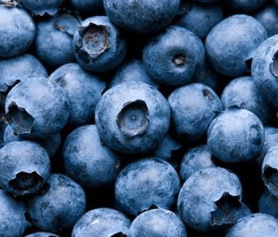 Organic Blueberries From Wimborne In Dorset