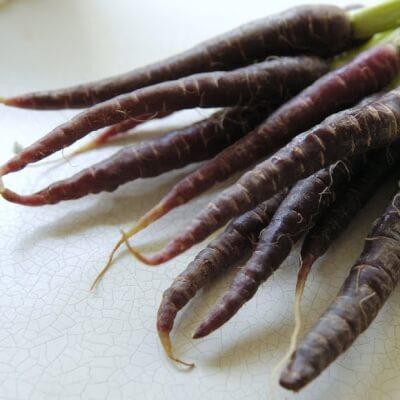 Organic Purple Carrots From Lancashire