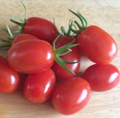 Organic Spanish Cherry Plum Tomatoes