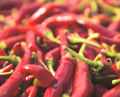 Organic Spanish Chillies