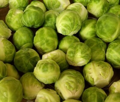 Organic Somerset Sprouts