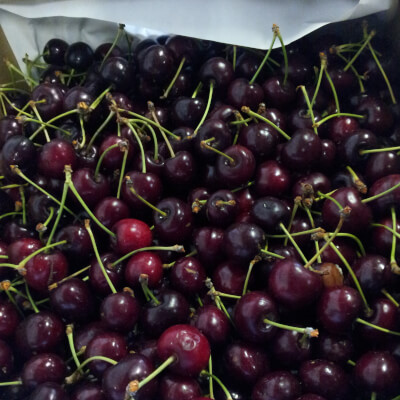 British Organic Cherries