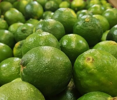 Organic Limes From Brazil