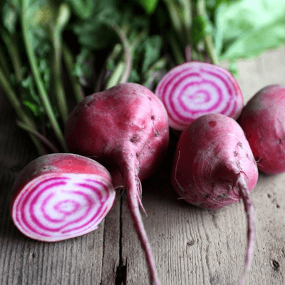 Organic Choggia Beetroot From Somerset