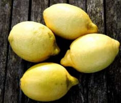 2 Organic Lemons