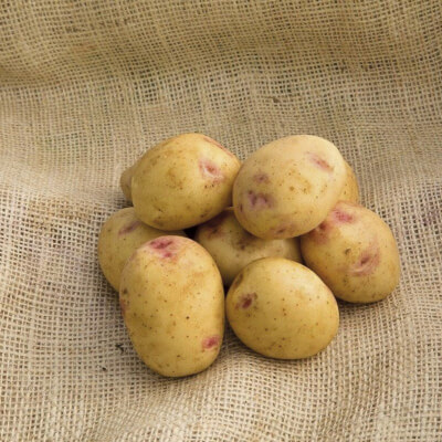 Organic Sorrento Potatoes - 500G Or 1Kg