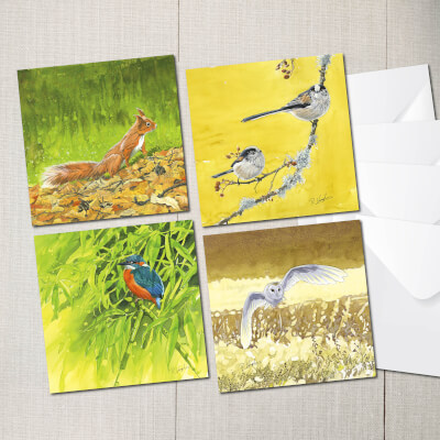 Pack Of 4 Mixed Cards.