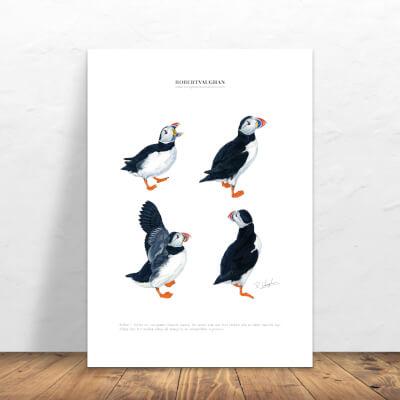 Print Puffins