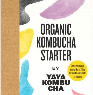 Organic Kombucha Starter Kit
