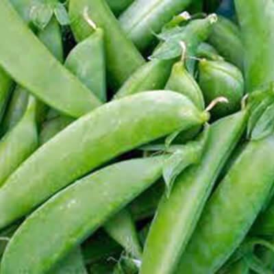 Sugar Snaps Peas