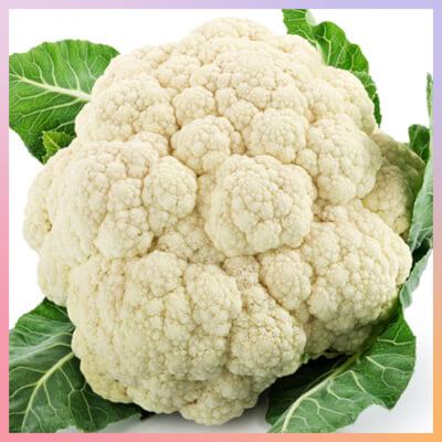 Large English Cauliflower - Lincolnshire